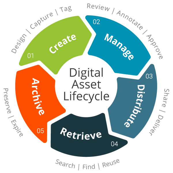 5 Tips to Organize Your Digital Assets for Success