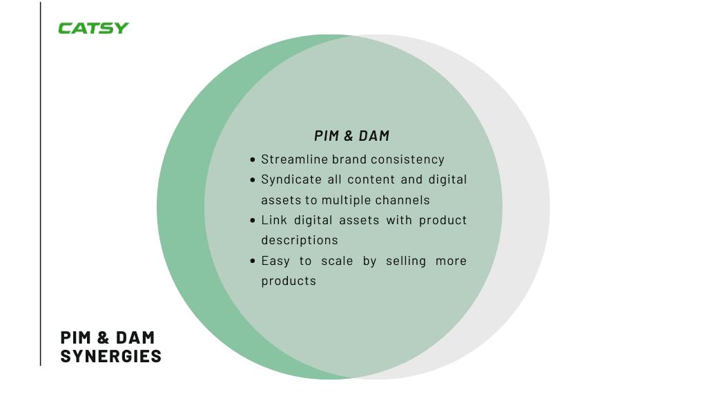 Catsy PIM integration digital asset dam software vs pim software