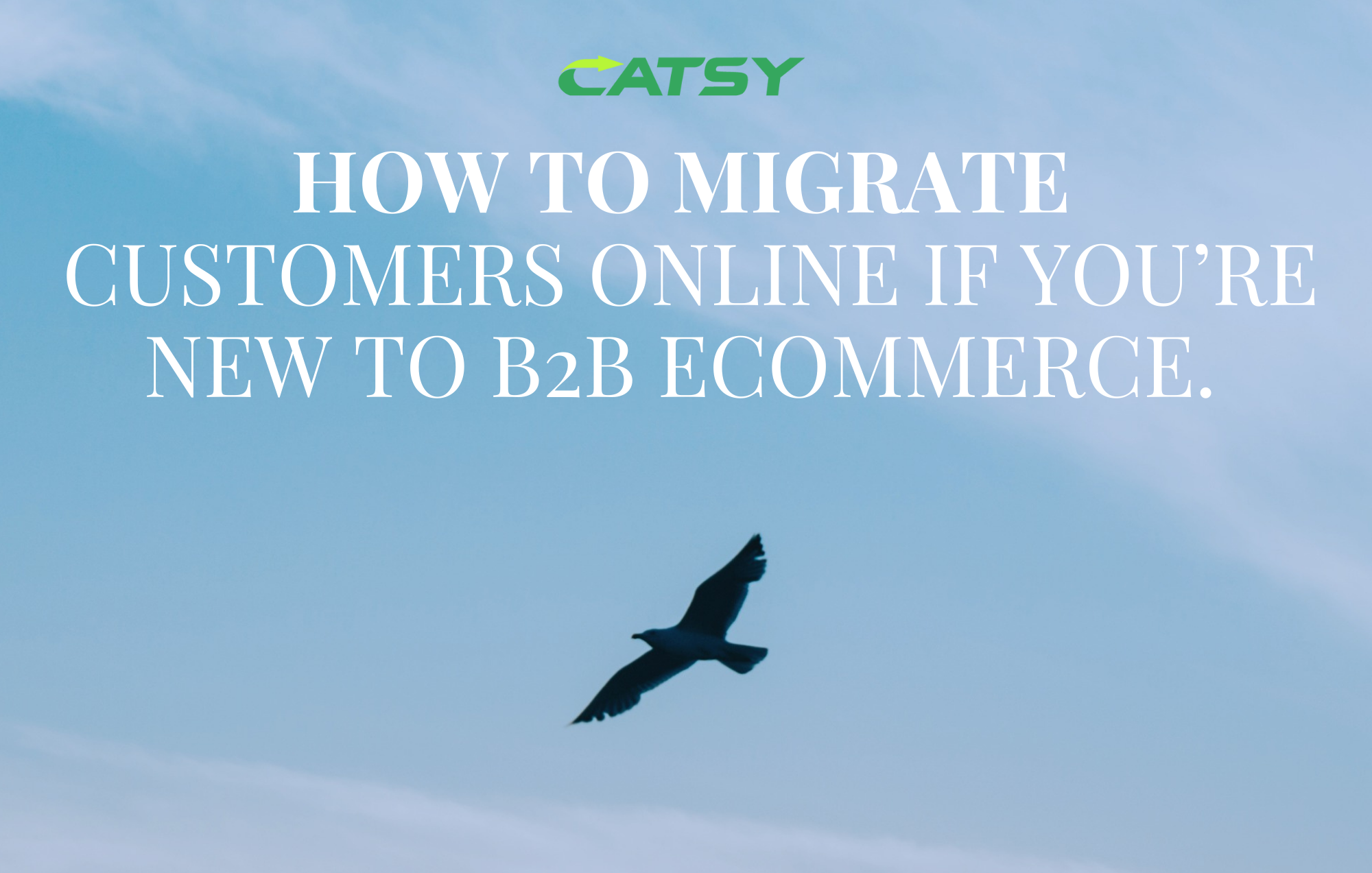How to Migrate B2B Customers to Online Channels if You're New to the eCommerce space.