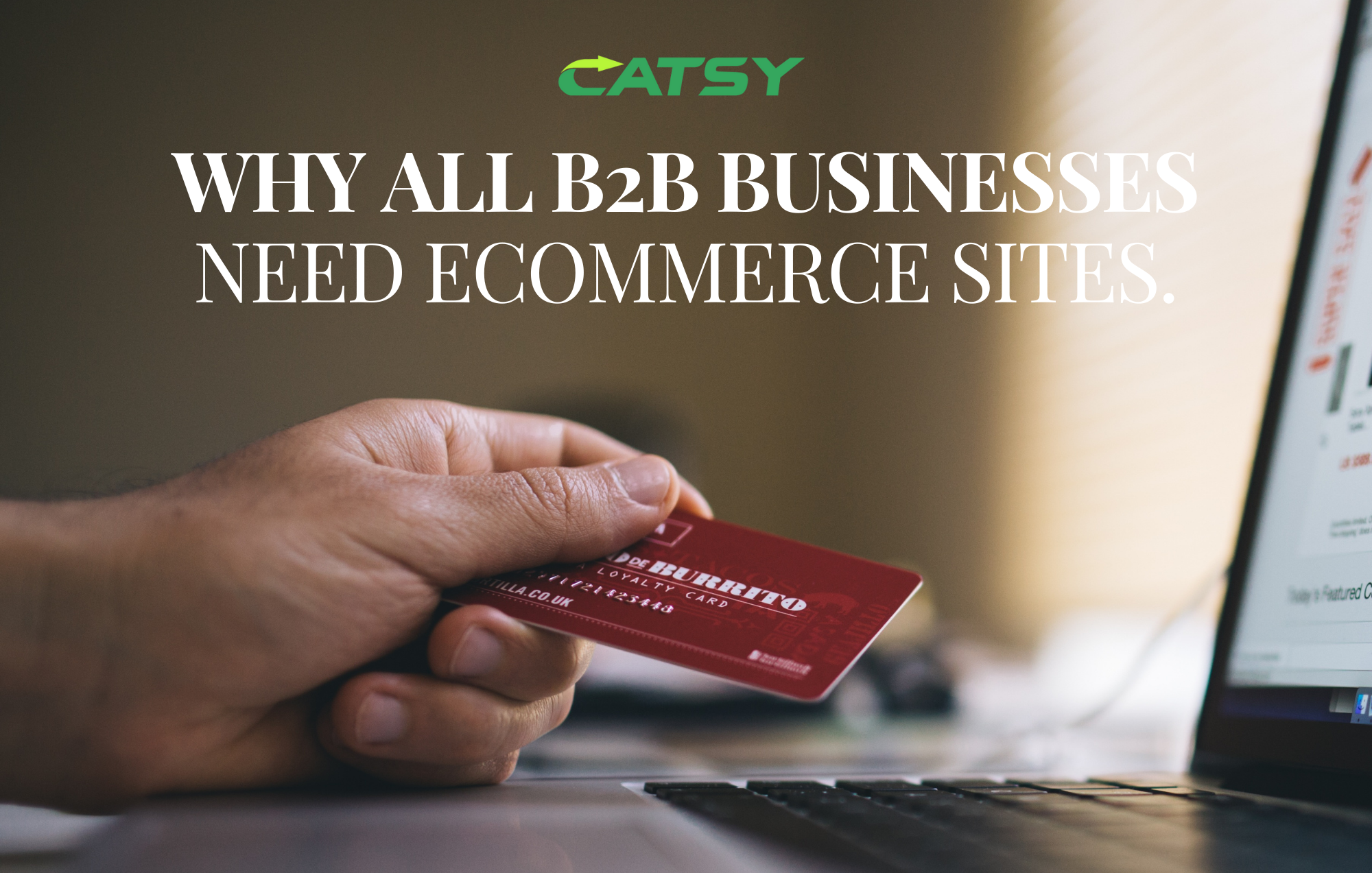 Why all B2B Businesses Need eCommerce Sites.